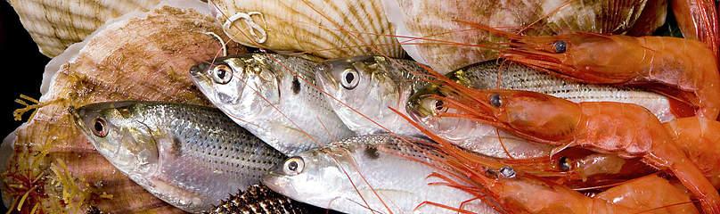 Cuisson des poissons coquillages et crustac s for Fish for diabetics